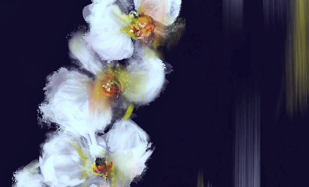 beautiful acrylic painting of orchids in white on a dark background