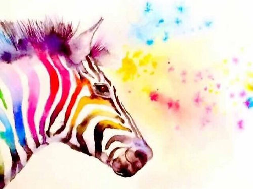 watercolour paintin of a zebra, raninbow colours, blue, yellow, red, pink.