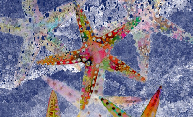 Acrylic painting of starfish on the shore