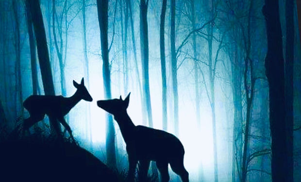 Watercolour an Ink paintng of a mother deer and baby deer inthe forest at night time their silhouettes shown against the moonlight.