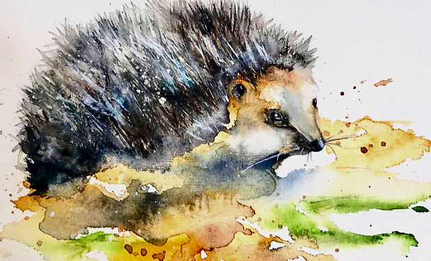 watecoour painting of a cute hedgehog in autum colours.