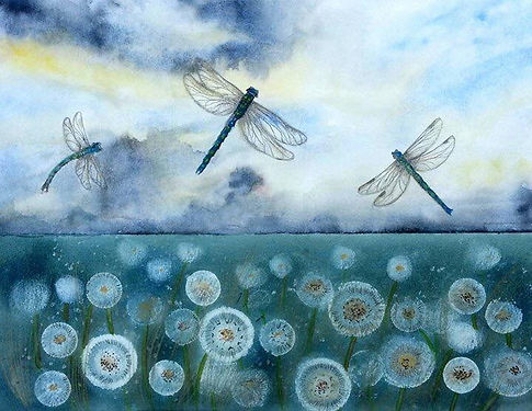 watrcolour painting of dandelions and dragonflies