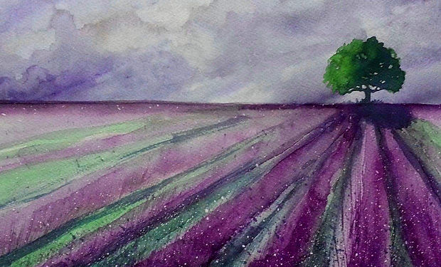 watercolout painting of lavender fields, purple and lilac.