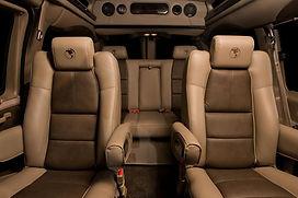 GM-Antelope_Steerhide_Interior.jpg