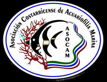 asocam