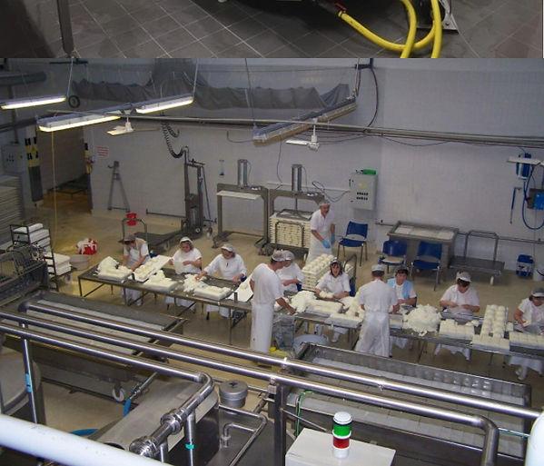 линия производство сыра 2.jpg