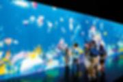 Интерактивный аквариум оживить рисунок