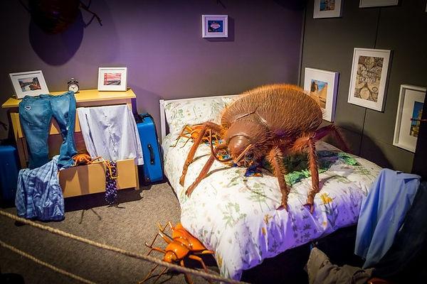Музей гигантских насекомых 18.jpg