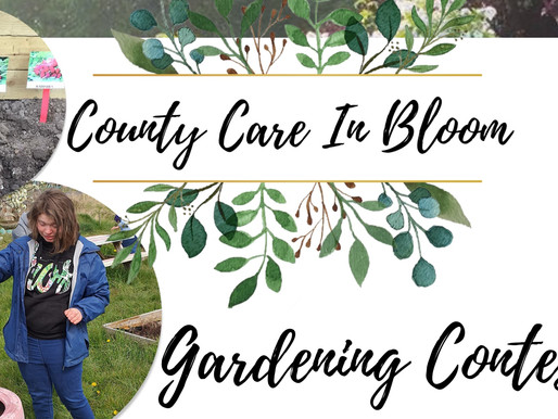 🌼🌸 County Care In Bloom Competition 🌼🌸