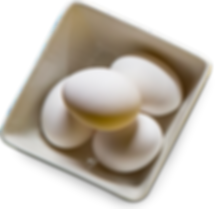 Home Page Art - Plate of Eggs.png