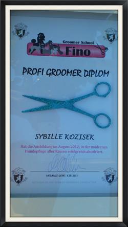 Groomer Diplom_edited_edited.jpg