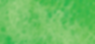 greentreeptawebsiteBG_green.png