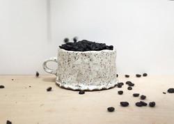 coffeebeansmotionmug.jpg