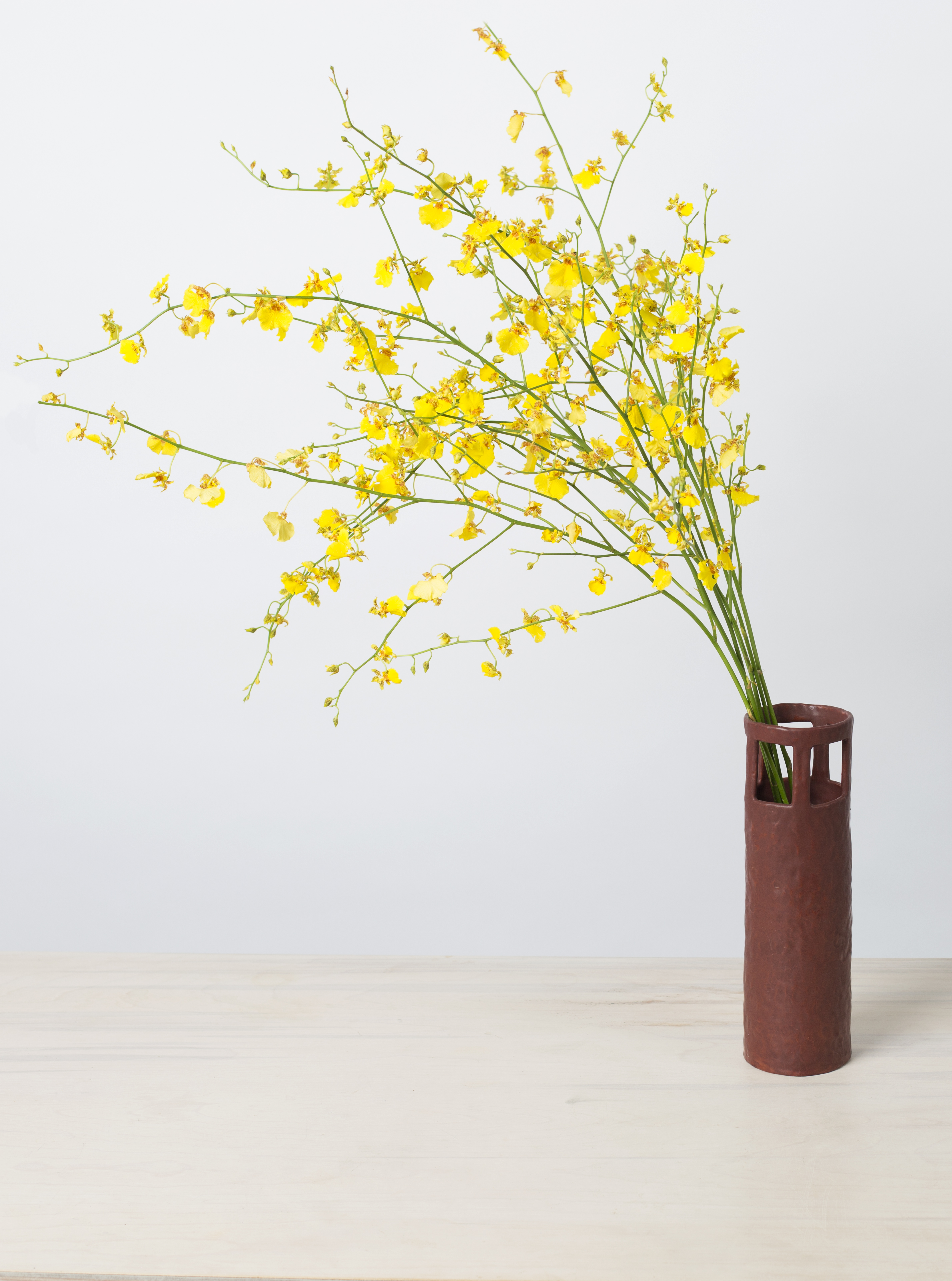 tall chocolate window vase.jpg