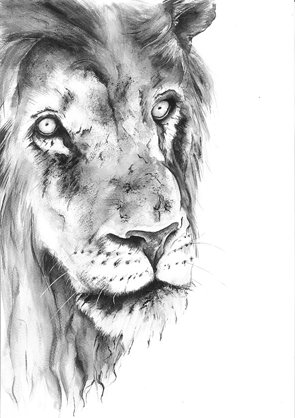 The lion's game   Watercolor