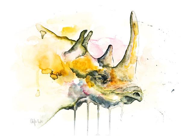 Black Rhino   Watercolor