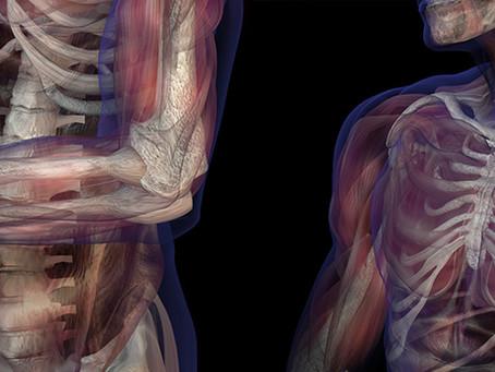 Breve ensaio sobre Fibromialgia e Psicossomática