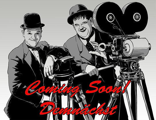 DAS Laurel & Hardy-Buch
