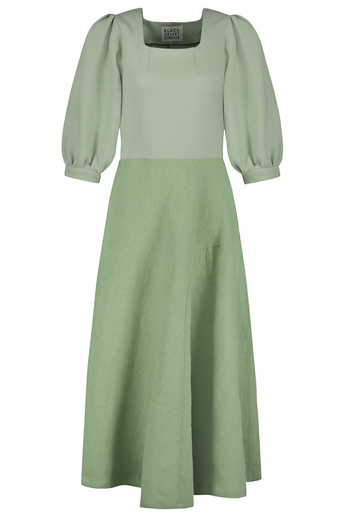 Dress Fern