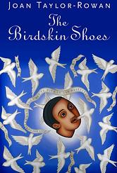 The Birdskin Shoes Book by Joan Taylor-Rowan