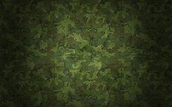 Estampado militar verde