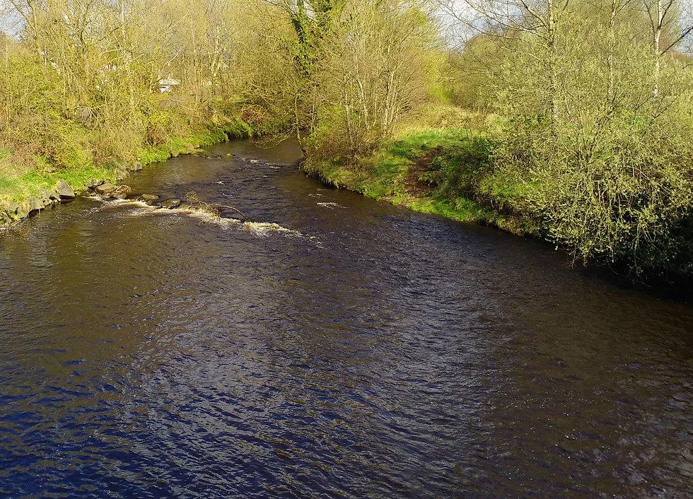 River Braid from Knockan Bridge