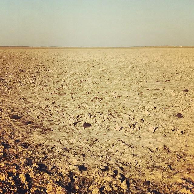Manare, la sed del llano