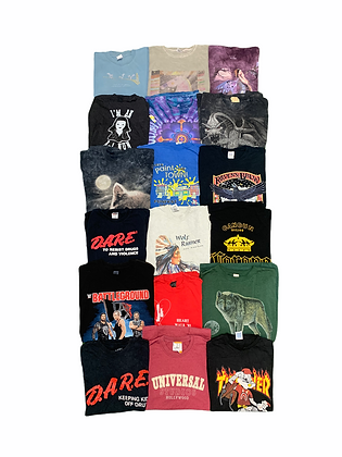 Assorted Tee T-shirt 18 Item Wholesale Bundle Lot (DARE, Universal Studios, WWE)