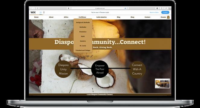 Diaspora Community...Connect!   Website Rebranding