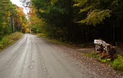 Rustic Road 2