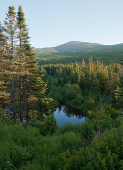Mountain, Lake, and Trees