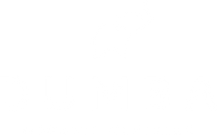Dumba Logo weiss.png