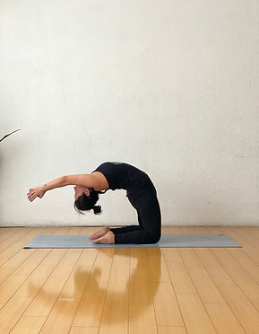 Home-shala prema-tipos-de-yoga-dharma-yo