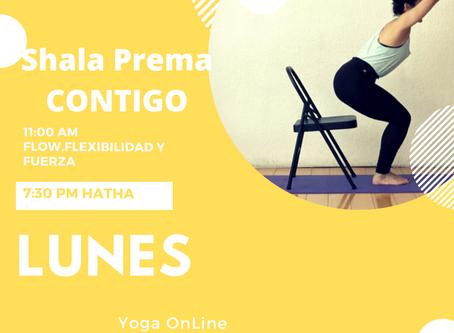 Yoga, gran opción para enfrentar aislamiento