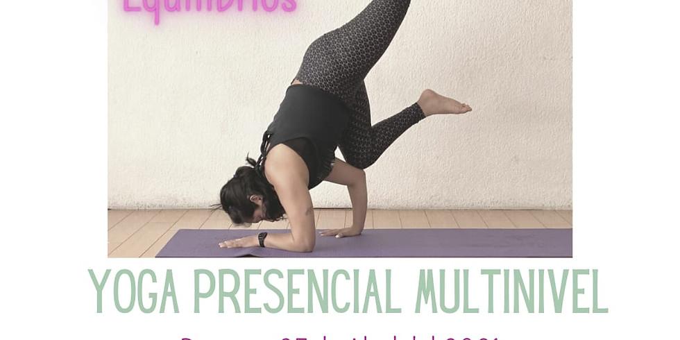 Equilibrios taller de yoga  (presencial)