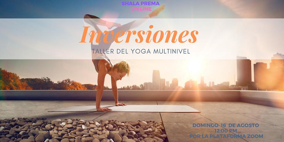 Taller Yoga :  inversiones MULTINIVEL