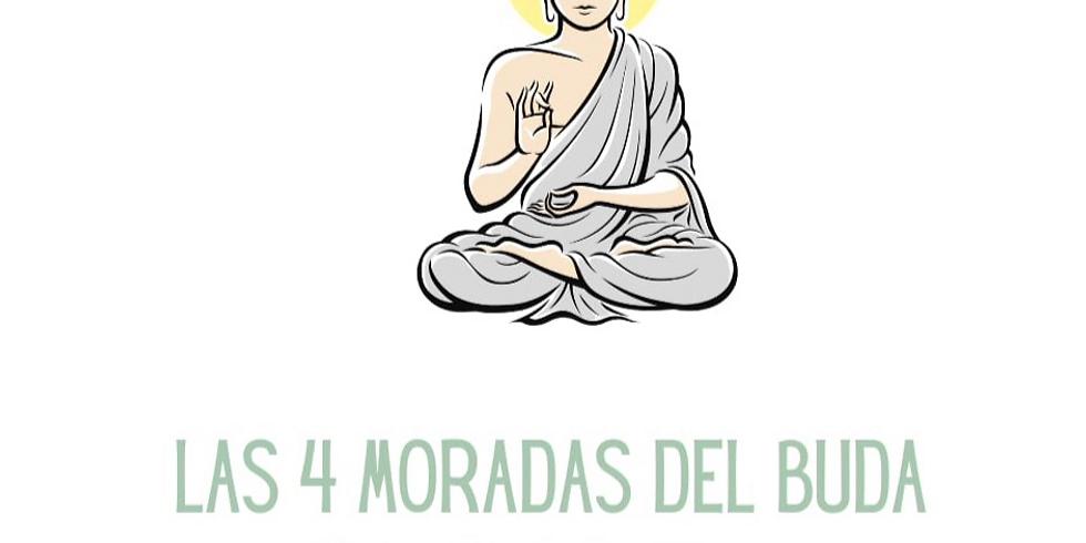 Un Corazón Abierto: Las Cuatro Moradas Buda (presencial)