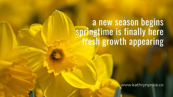 Haiku [www.kathrynprice.co] - Spring.jpg