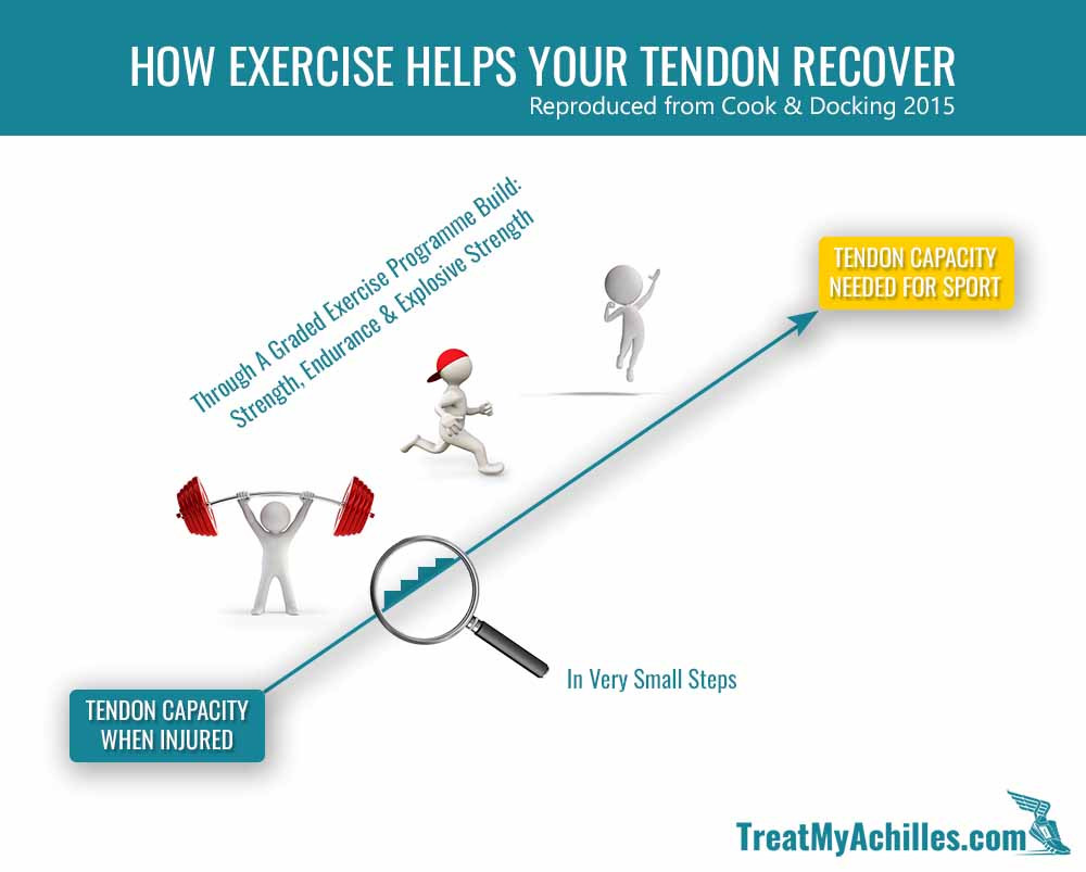 You have to increase your strength training and running intensity slowly over time in order to allow your tendon to adapts to the new loads and become more robust.