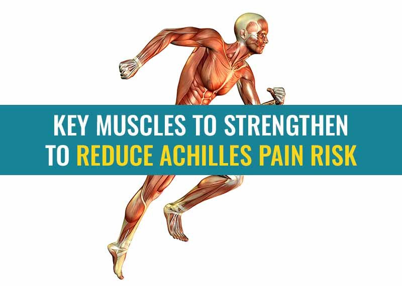 Running man with his muscles exposed showing the key muscles to strengthen to reduce Achilles pain.