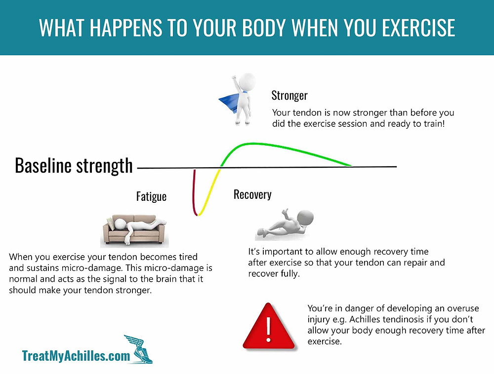 This graph explains how your body accumulates microdamage when you do marathon training and how it can lead to Achilles pain if you don't allow enough recovery time.
