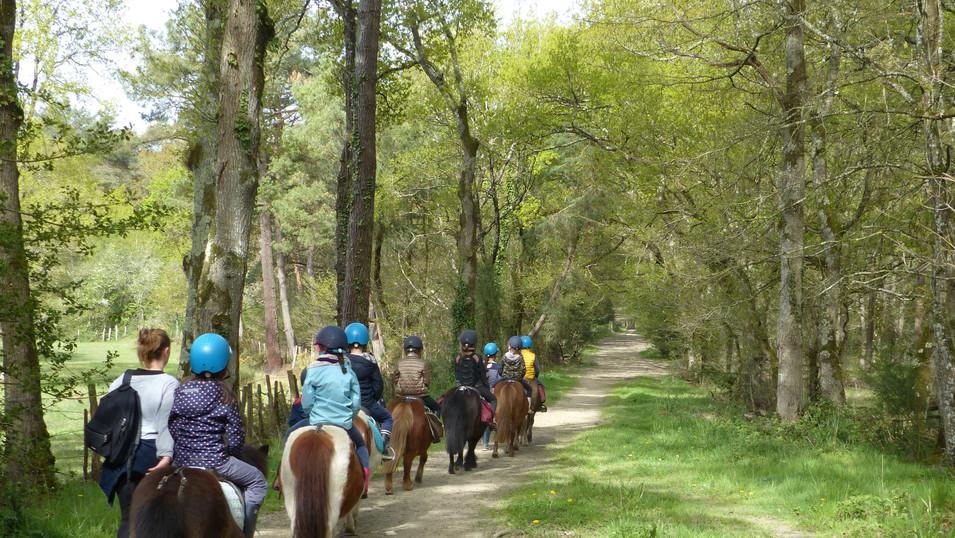 VACANCES DE PRINTEMPS : Stages Loisirs et poneys