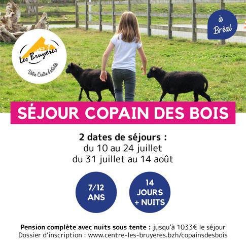 Visuels RS_copain des bois-41.jpg