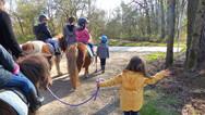 Journées stage poney