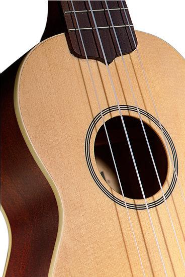 Beginner ukulele Malta Sliema