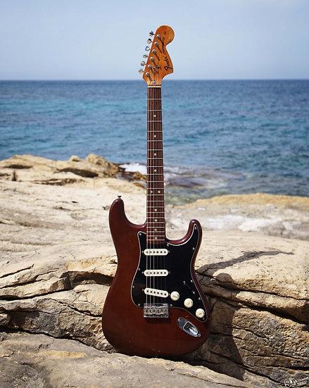 Fender Stratocaster Hard Tail 1976 | USA