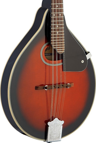 Bluegrass Mandolin with spruce top