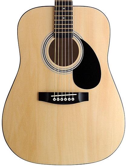 SW201 N 3/4 acoustic guitar