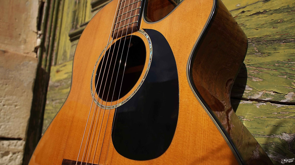 takamine guitars malta