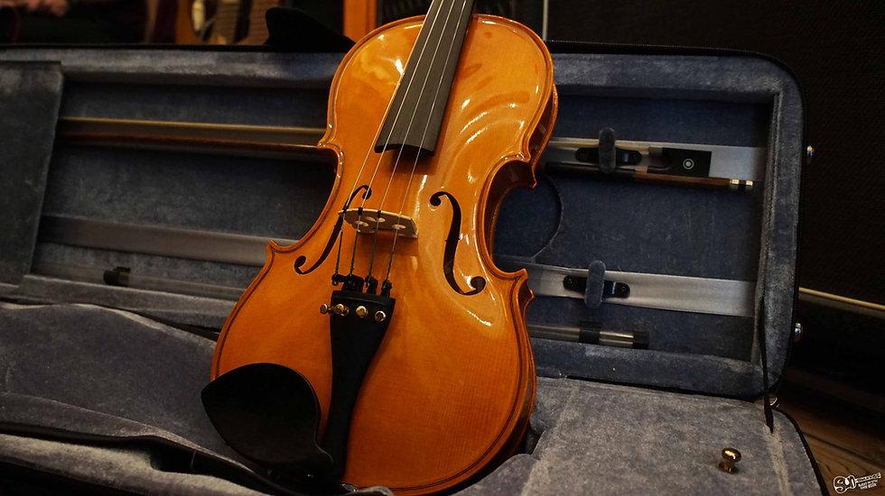 strunal violin